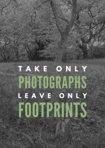 Take only photos