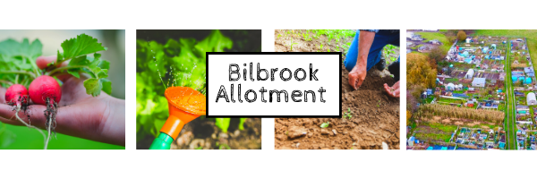 Bilbrook Allotment